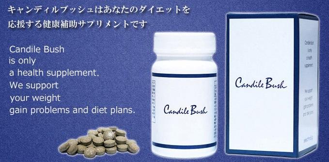 キャンディルブッシュは痩せない?キャンデト茶との口コミと効果・危険性を暴露します